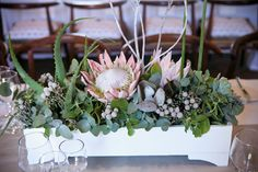 I like the grey, green, and pink from King Protea. Pleasant colors.   #niffy