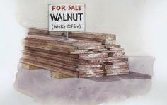 Lumber and Sheet Goods | WOOD Magazine...