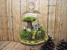 Home-Sweet-Home- Miniature Landscape, Live Moss Terrarium with raku fired ceramic houses. Handmade by Gypsy Raku