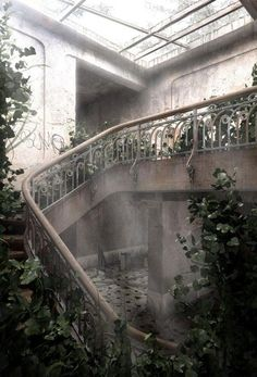 abandoned over grown greenhouse, greenery, stairwell, pretty ornate wrought iron white stair railing