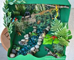 rainforest-sensory-bin-amazon-river-basin And what a great day to go exploring!