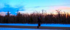 Winter Runner on The Dawson Trail in a Manitoba Sunset