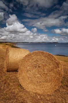 I love hay bales in the field.