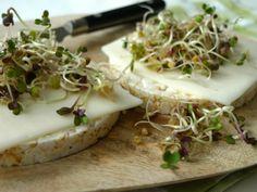 Kiemen zijn gezond, ze zitten bomvol mineralen en vitamines. Heel lekker op een rijstwafel met geitenkaas of pindakaas!  | http://degezondekok.nl