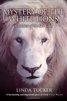 African shamana of the mysterious white lions...prophecy and mystery.