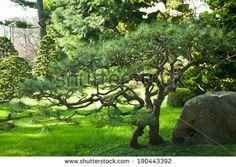 Japanese Gardens Stock Photos, Japanese Gardens Stock Photography, Japanese Gardens Stock Images : Shutterstock.com