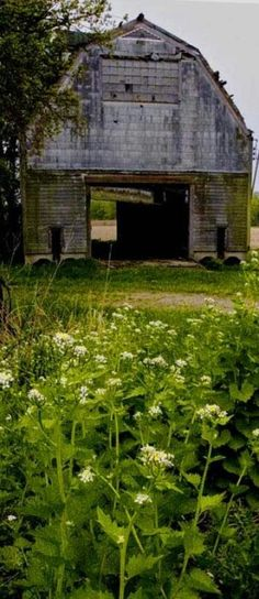Country ~♥~ Life ◦✩☼◦ Old Barns