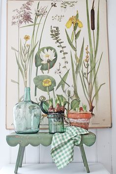 VIBEKE DESIGN - old botanical print with potted bulbs and scallop-edge stool Illustration Botanique, Botanical Illustration, Botanical Decor, Botanical Prints, Botanical Bedroom, Deco Champetre, Vibeke Design, Deco Nature, Deco Floral
