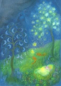 Maan- en sterrenboompjes, Angela Koconda