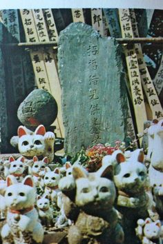japanese gravestones (with cats).