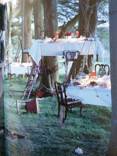 Tim Walker - storyteller photographer