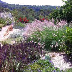 contemporanium mediterranean garden design in mallorca