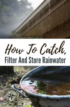 Good thoughts: How To Catch, Filter and Store Rainwater — When you ask most people how to catch rainwater, they think it is as simple as having a slanted surface that drains into a gutter and then into some kind of holding tank. Homestead Survival, Survival Food, Camping Survival, Survival Prepping, Survival Skills, Emergency Preparedness, Survival Equipment, Emergency Preparation, Survival Shelter