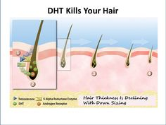 21 Best Thinning Hair? Let's Look at the Growth Cycle images