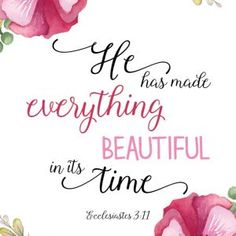 He has made everything beautiful - Ecclesiastes 3:11