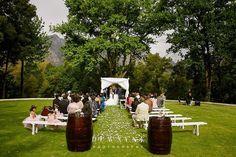 Gallery - Oh So Pretty Wedding Coordinator, Wedding Planner, Wedding Venues, Open Gallery, Destination Weddings, Light Photography, Cape Town, Pretty, Wedding Planer