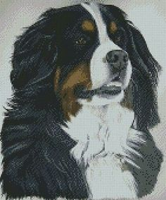 #Cross stitch #chart bernese #mountain dog sophie, View more on the LINK: http://www.zeppy.io/product/gb/2/331833069756/