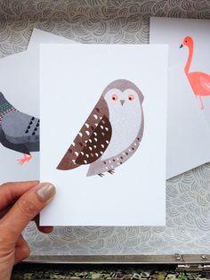 Bird Series Postcard Set   Scout Editions   Buiten de Lijntjes