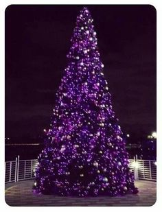 For a vibrant Christmas tree and festive decorating scheme for a contemporary home, how about opting for a rich plum? These striking purple Christmas trees and coordinating decorations are a great … Purple Love, All Things Purple, Shades Of Purple, Deep Purple, Pink Purple, Purple Stuff, Purple Glass, Purple Christmas Tree, Noel Christmas