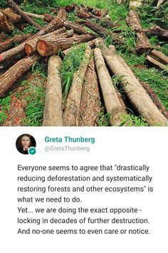 Tech Quotes, We Need, Destruction, Forests, Environment, Motivation, Woodland Forest, Woods, Inspiration