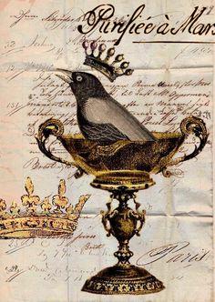 Vintage Bird Collage Background ~ Antique Prints Passion