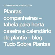 Plantas companheiras – tabela para horta caseira e calendário de plantio – blog Tudo Sobre Plantas