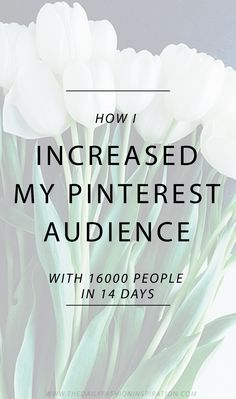 - How I grew my blog