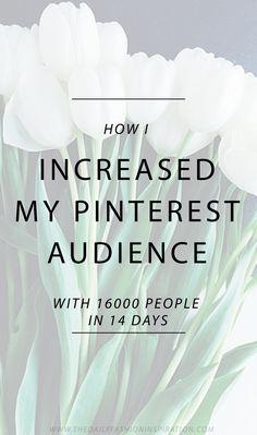 How I grew my blog and Pinterest - Pinterest strategies - Pinterest tips