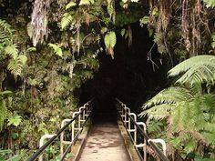 Thurston lava tube - Volcanoes National Park, Hawaii (Big Island)