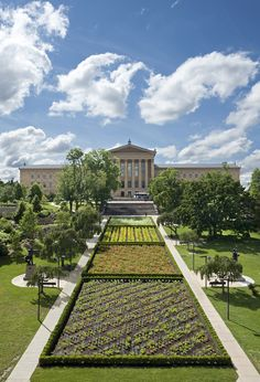 """What's in bloom at the Museum? Sol LeWitt's monumental public artwork """"Lines in Four Directions in Flowers""""!  Commissioned by the Fairmount Park Art Association in 1981. Realized by the Philadelphia Museum of Art in 2012 in cooperation with Philadelphia Parks & Recreation"""