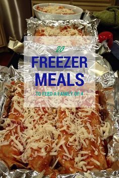 20 Freezer meals to feed a family of 4. 100% gluten free, clean, and healthy. 21 day fix approved! http://thatswhatsfordinner.blogspot.com/2015/04/freezer-meals.html