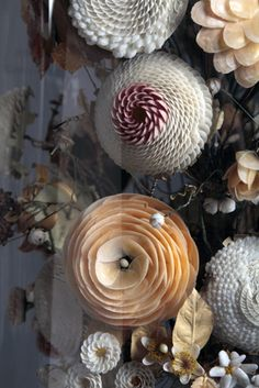 Victorian Shellwork Flowers
