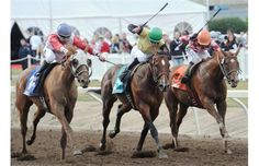 The Canadian Derby featured a close race to the finish with, from left, Toccetive (No. 3), Doug's Buddy (#5) and Devil in Disguise (#7) neck and neck down the stretch at Northlands Park on Aug. 25, 2012.