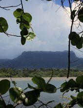 Montaña El Yunque