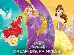 【ディズニーランド 迪斯尼樂園 Disneyland】 Disney Princess