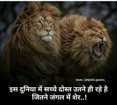 Funky Quotes, Swag Quotes, Girly Attitude Quotes, Attitude Status, Advice Quotes, Hindi Quotes Images, Inspirational Quotes In Hindi, Desi Quotes, Marathi Quotes