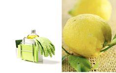 15 modi per usare succo di limone in casa