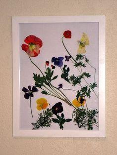 Pressed Flower Art Ideas   Found on kidscreativearts.com