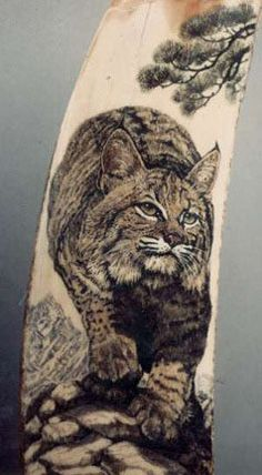 Scrimshaw Designs | ... scrimshaw engraving on fossil walrus eskimo artifact margay scrimshaw