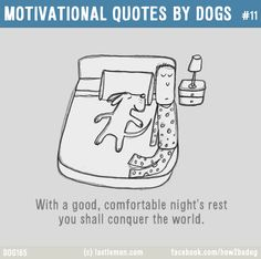 Dogs: MOTIVATIONAL QUOTES BY DOGS #11: With a good, comfortable night's rest you shall conquer the world.