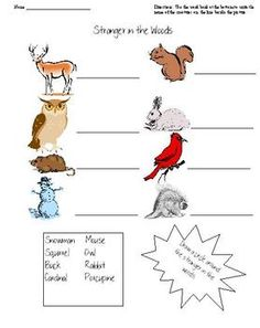 """Quick Activity to use with book """"Stranger in the Woods"""" by Carl Sams"""