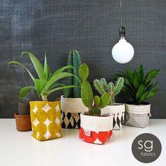 Cactus in soft buckets by skinnylaminx Cacti And Succulents, Potted Plants, Indoor Plants, Plant Pots, Cactus Planta, Cactus Y Suculentas, Decoration Design, Deco Design, Home Interior