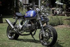 Motorcycle Icon, Honda, Minibike, Mozart, Scrambler, Monkeys, Bobber, Cars And Motorcycles, Minis