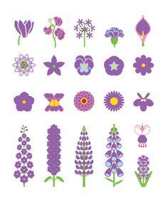 Purple haze - in bloom in August #flowers