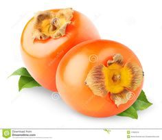 persimmon-fruits-17932519.jpg (1300×1126)