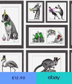 Statement Wallpaper Rolls & Sheets Home, Furniture & DIY Dog Wallpaper, Washroom, Animal Design, Funny Animals, Rolls, Gallery Wall, Colours, Black And White, Diy