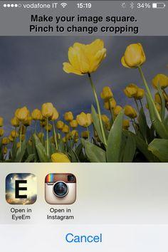 Condivisione delle immagini su Instagram dal pc