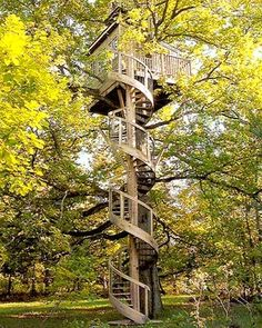 spiral stairs to a treehouse!