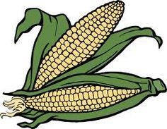 ear corn illustrations and clipart 365 ear corn royalty free rh pinterest com Pineapple Clip Art Turkey Clip Art