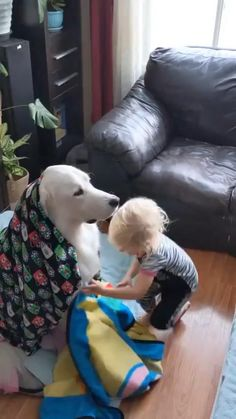 Cute Funny Baby Videos, Cute Funny Babies, Funny Animal Videos, Cute Funny Animals, Funny Animal Pictures, Cute Baby Animals, Funny Kids, Cute Kids, Cute Pictures